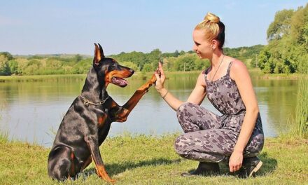 Perros potencialmente peligrosos o Personas potencialmente peligrosas.