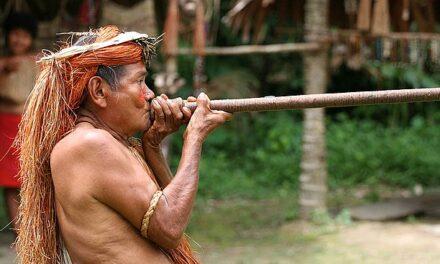 El personal militar ya ocupa casi el 60% de las coordinaciones regionales de Funai en la Amazonía Legal