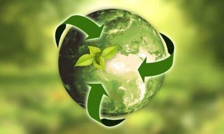 La transición ecológica está proporcionando nuevos empleos verdes