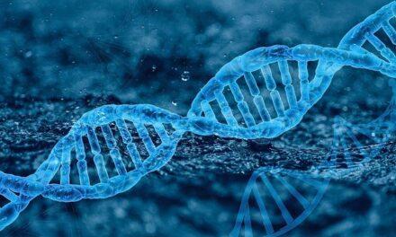 GENES Y VIRUS, ¿futuro o presente? Optogenética en humanos