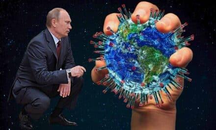 En Rusia parecen los primeros humanos infectados por gripe aviar