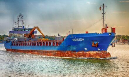 """Información de las actuaciones del Ministerio de Agricultura, Pesca y Alimentación en relación con el transporte de terneros del buque """"Karim Allah"""""""