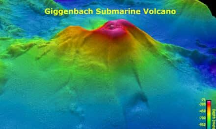 """Un terremoto notable, información preliminar: magnitud 8, la región de las islas de Kermadec"""", tuiteó el Servicio Geológico de EEUU (USGS)"""