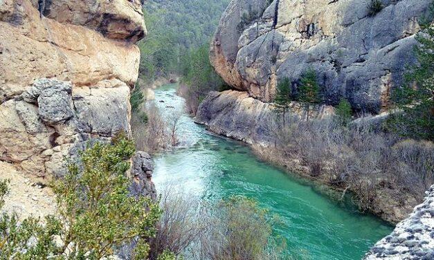 El Gobierno de Castilla-La Mancha reabrirá los Centros de Interpretación de los parques naturales regionales el próximo sábado, 27 de marzo