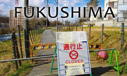 11M, Fukushima trata de volver a la normalidad