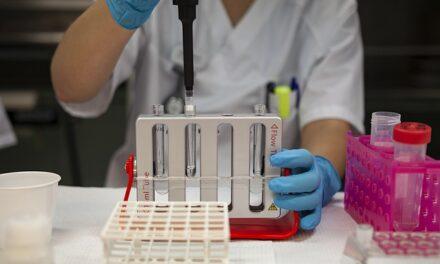 El GTM propone medidas para hacer más atractiva la carrera investigadora en España